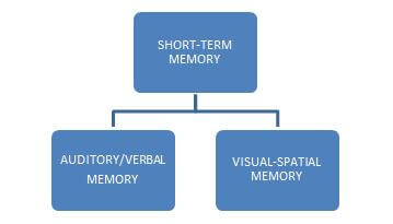 Cognitive Psychology In UX - Short-term memory